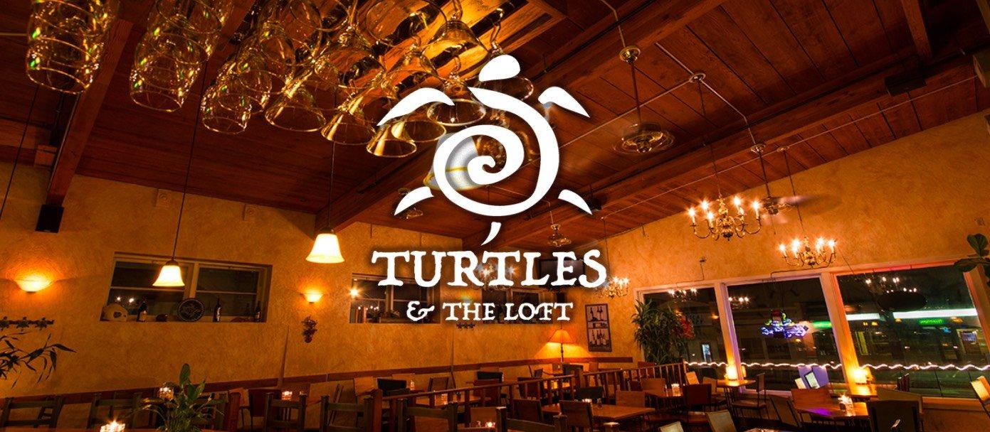 Turtles & The Loft