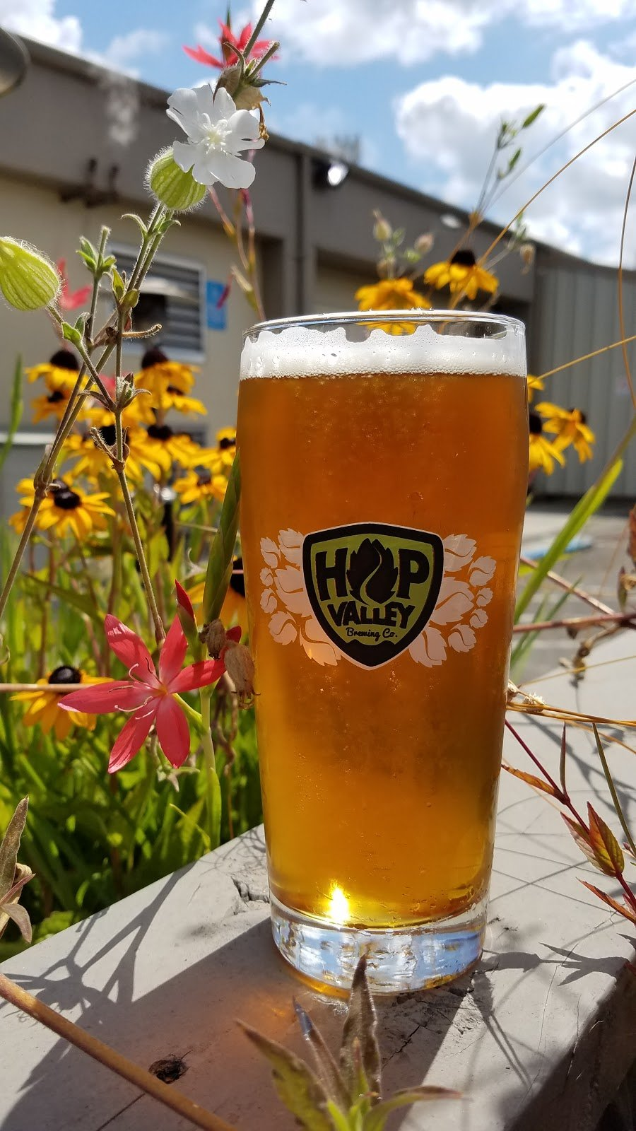 Hop Valley Brewing Co